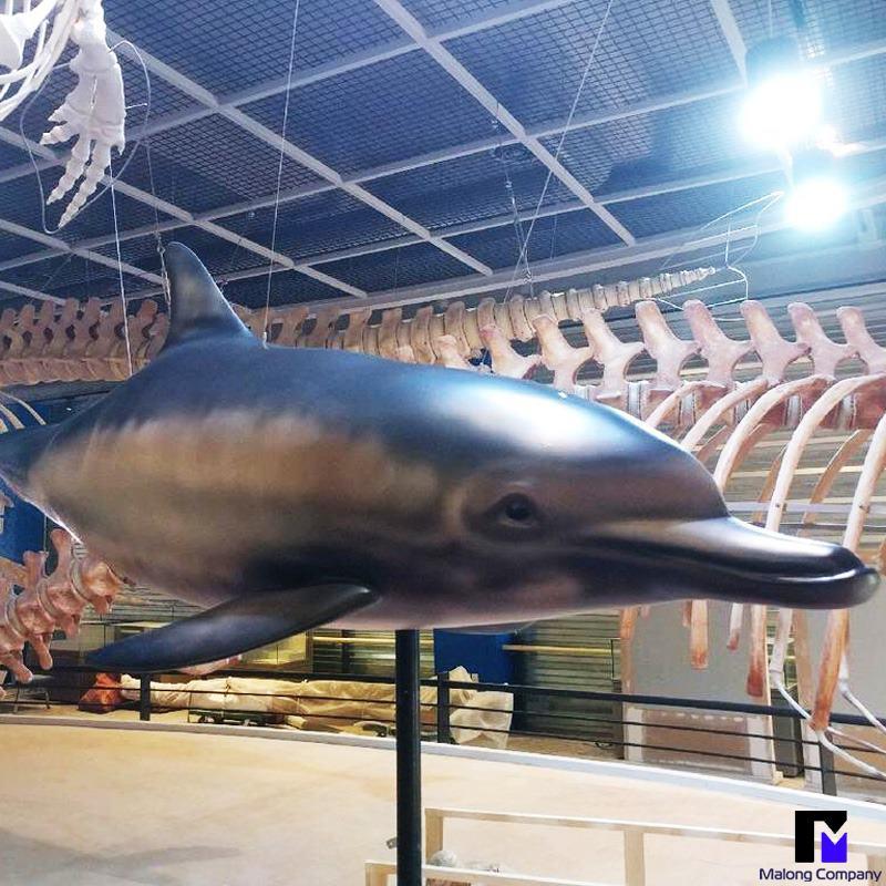 FRP 조형물 울산 고래박물관 고래 모형 설치 사례