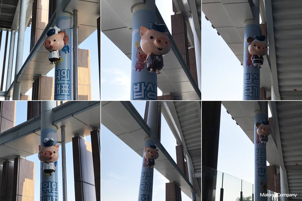 [기둥 캐릭터 조형물] 한돈 브랜드 캐릭터를 활용한 FRP 돼지 광고 조형물 제작